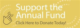Annual Fund Button